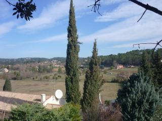 Taille de cyprès de Provence à Lorgues - Var Elagage