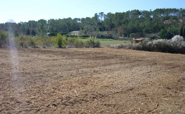 Débroussaillage de champ et parcelle agricole dans le Var