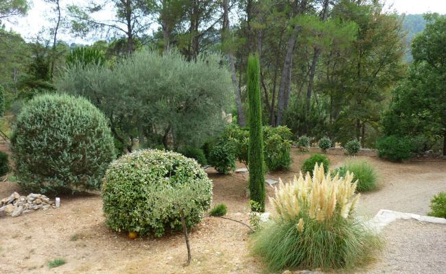 Plantations et travaux paysagers - Jardinier / Paysagiste
