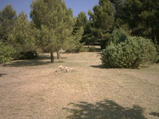 Nettoyage et entretien de propriété plusieurs hectares près de Fréjus