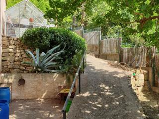 Nettoyage des allées du jardin à Fréjus - Var Elagage