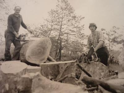 Var Elagage histoire - Elagage - Taille ornementale - Abattage d'arbres - Débroussaillage - Entretien de jardin dans le Var